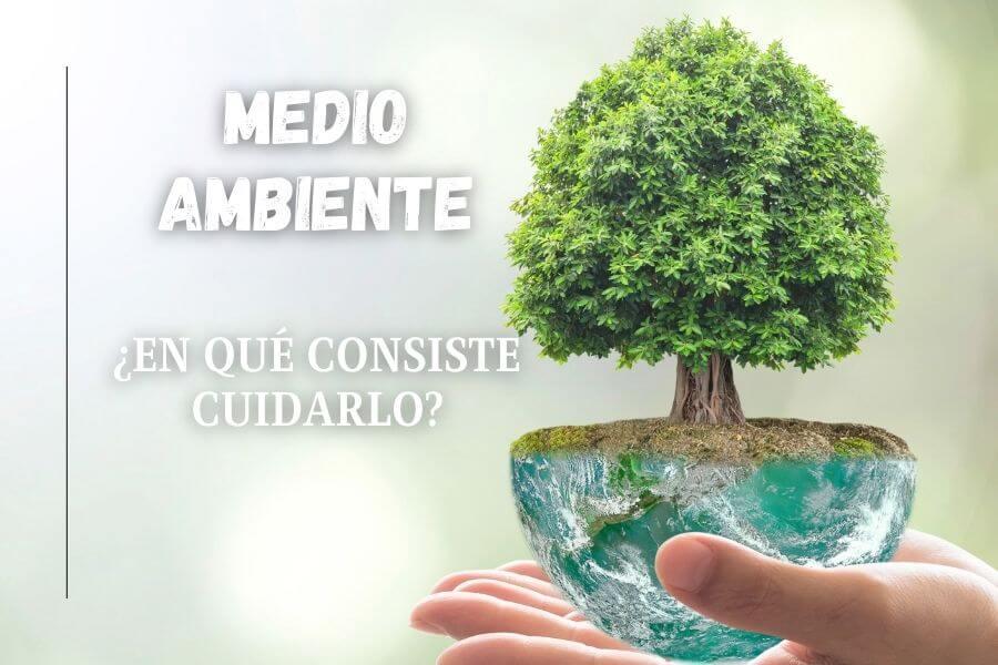 ¿En qué consiste el cuidado del medio ambiente?